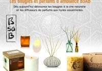 news_031114_boutique_bsab_02